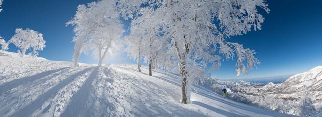 ASleigher ski touring in Japan